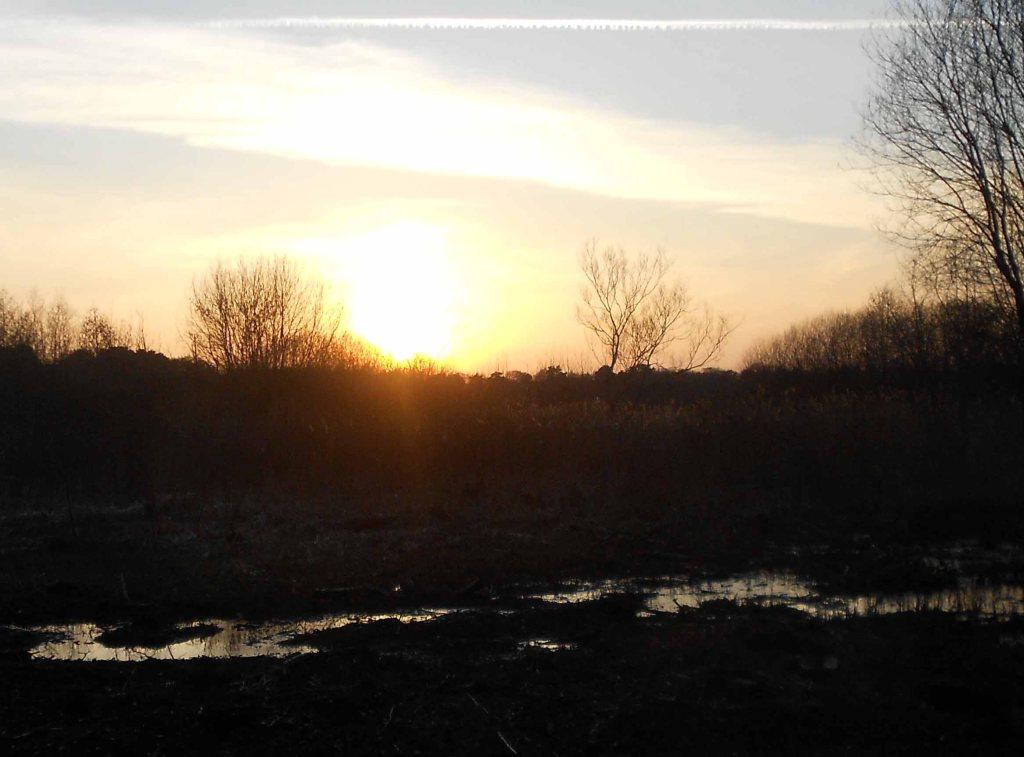 blog sun 1