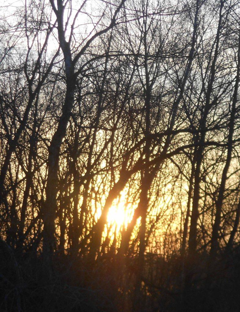 blog sun 2