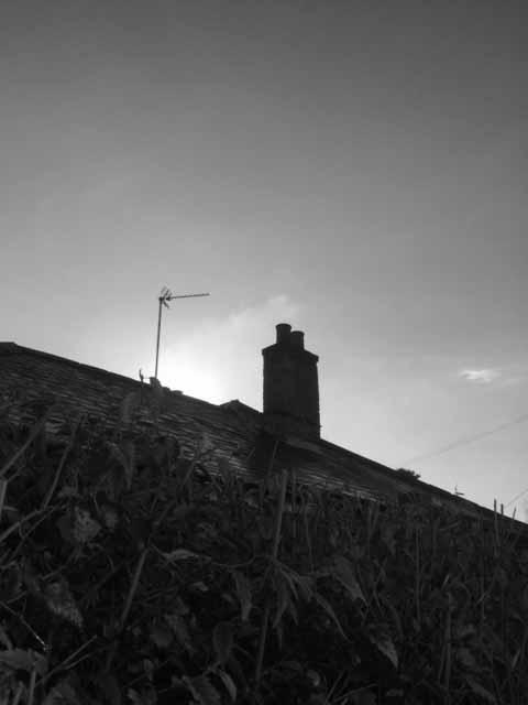 black and white architecture a
