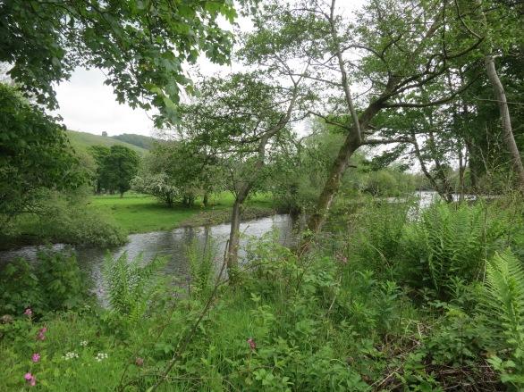 Wales 2014 091